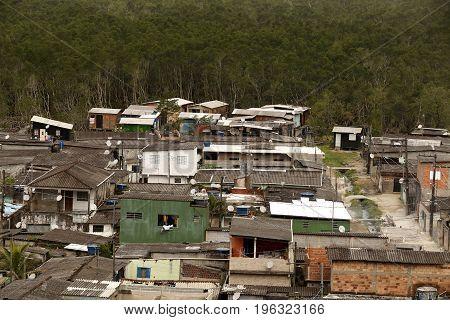 Slum In Mangrove Ecosystems