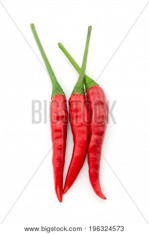 Hot Chili Pepper Or Small Chili Padi Isolated On White Background