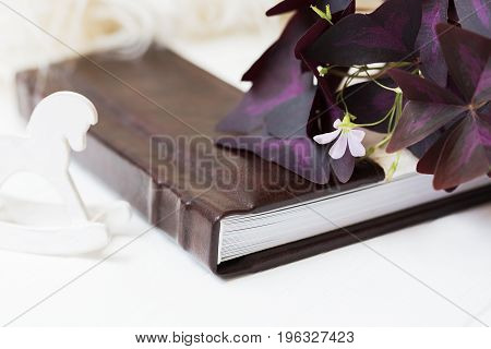 A beautiful photobook of white with brown lies on a white background near lies a beautiful flower. Little white horse