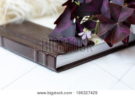 Photobook white with brown lies on a white background near lies a beautiful flower