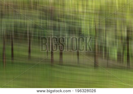 Abstract Motion Blur, Trees Trunk & Leave, Yellow Green Background