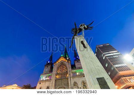Bolivar Condor At Night