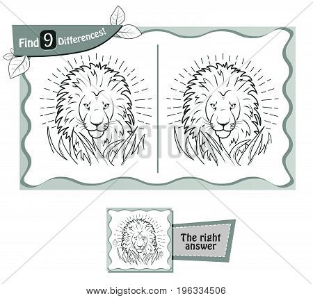 Find 9 Differences Game  Lion