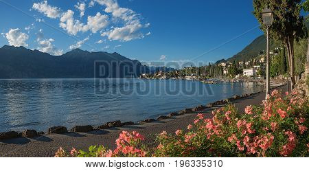 Beautiful Malcesine Lakeside Promenade With Blooming Rose Flowrbeds
