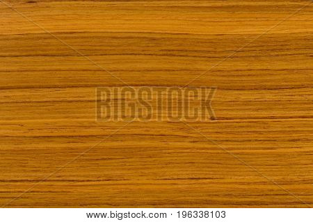 Teak texture with patterns. Extremely high resolution photo.