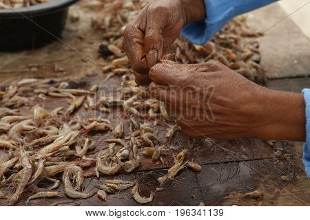 Cleaning Fresh Shrimp