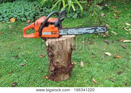 Chain saw on a log in a garden