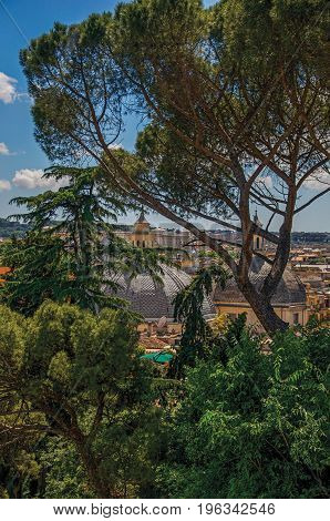 Overview of trees, cathedrals domes and roofs of buildings on a sunny day in Rome, the incredible city of the Ancient Era, known as