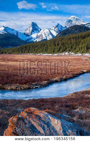 A Mountain Meadow In Kananaskis, Alberta, Canada