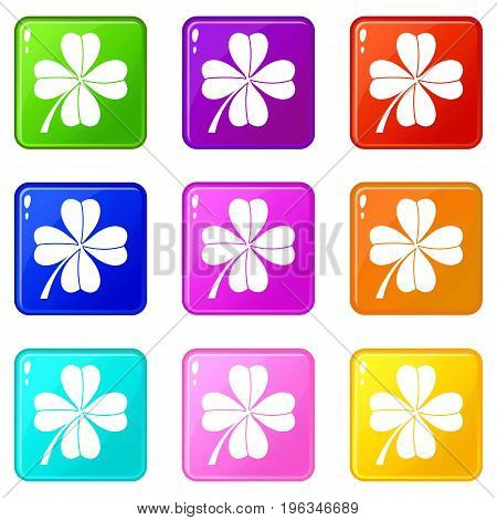Four leaf clover icons of 9 color set isolated vector illustration