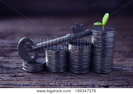 stack coins with old key green plant or small tree,concept idea for key open to success business and growth.