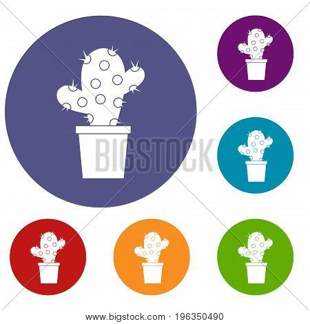 Cactus icons set in flat circle red, blue and green color for web