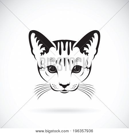 Vector of a cat face on white background Pet. Animals.