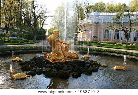 Peterhof, St. Petersburg - May 15, 2010: The Orangery Fountain Triton  in Peterhof, St. Petersburg