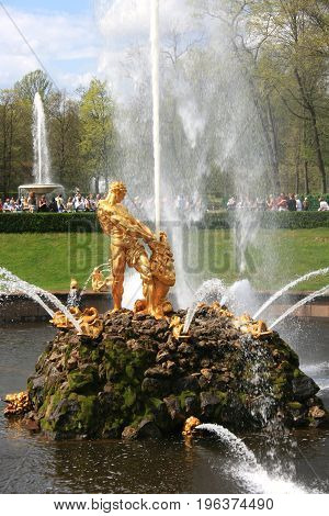 Peterhof, St. Petersburg - May 15, 2010: the Samson Fountain, Grand cascade in Peterhof, St. Petersburg