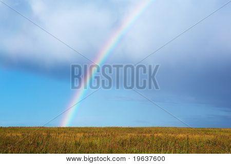 Rainbow over autumn grass field