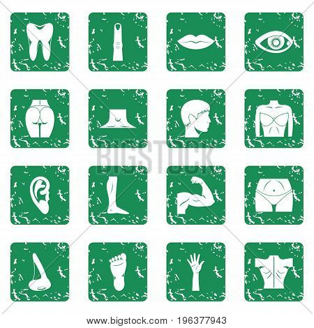 Body parts icons set in grunge style green isolated vector illustration