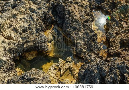 puddle of the sea water among the spongy remains of volcanic rock, natural texture
