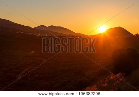 Panoramic landscape view of a vineyard, green hills and country road in Crete, Greece. Sunset light.