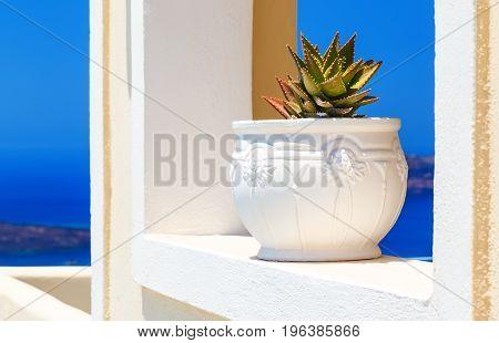 greek island cyclades architecture with cactus over caldera mediterranean sea santorini view