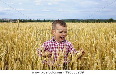 Boy enjoying life playing and having fun in a wheat field
