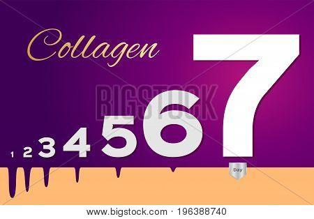 collagen improve skin in seven days vector