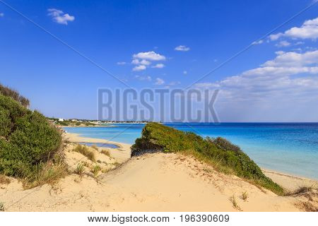 Italy summer seascape, Apulia coast: Marina di Lizzano beach (Taranto). In the foreground dunes with lush mediterranean scrub.The coastline is characterized by a suggestive alternation of sandy coves and jagged cliffs overlooking a truly clear and crystal