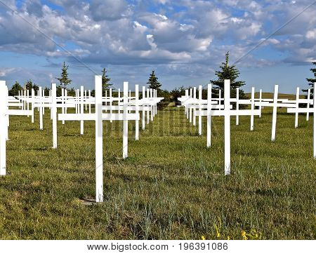 White crosses represent soldiers who gave their life in a country cemetery