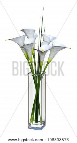 3D rendering of calla flowers in a glass vase isolated on white background