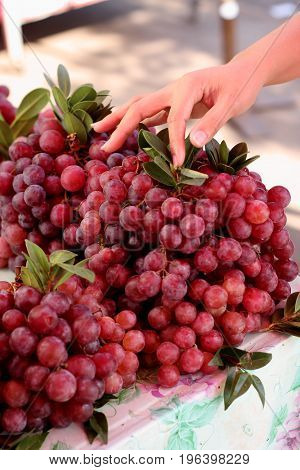Hand on red grape sale in local market.