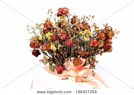 Bouquet of dried withered roses on white background.