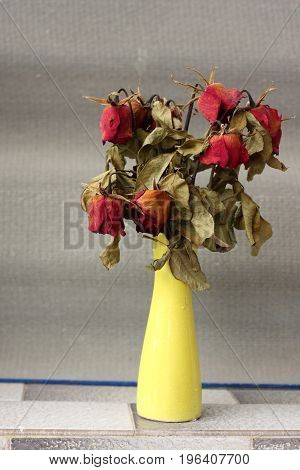 wither dried rose bouquet in yellow vase.