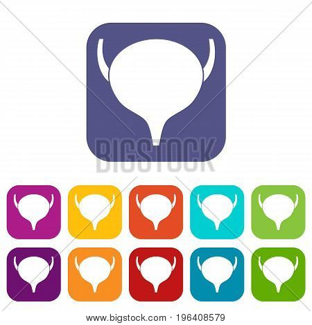Bladder icons set vector illustration in flat style in colors red, blue, green, and other