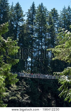 Vancouver Canada - June 24 2017: People crossing the famous Capilano suspension bridge on a sunny day