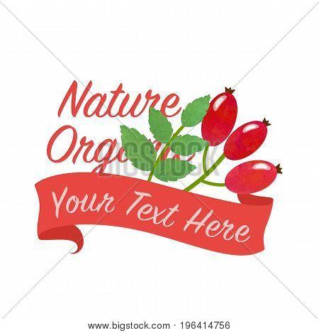 Colorful Watercolor Texture Vector Nature Organic Vegetable Banner Rose Hips