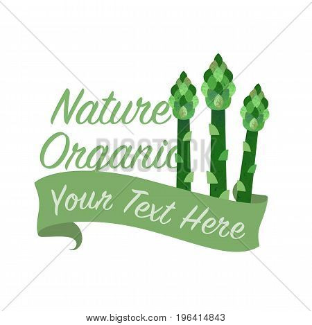 Colorful Watercolor Texture Vector Nature Organic Vegetable Banner Asparagus