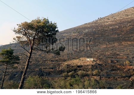 Zrnovnica Split Croatia - July 18 2017: Saved trailer after massive wildfire burning down the forest and villages around city Split