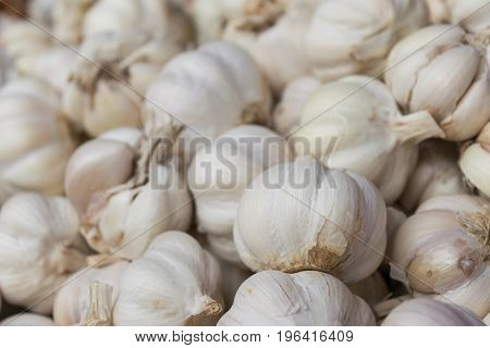 garlics in close up view from market street