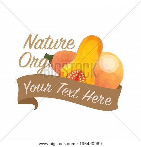 Colorful Watercolor Texture Vector Nature Organic Vegetable Banner Butternut Squash