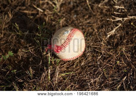 Worn Baseball Laying on the Ground in Dirt