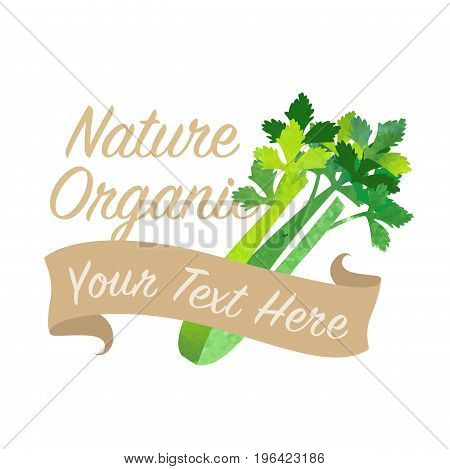 Colorful Watercolor Texture Vector Nature Organic Vegetable Banner Celery