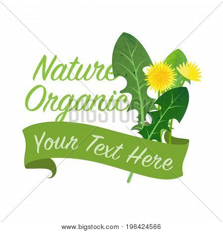 Colorful Watercolor Texture Vector Nature Organic Vegetable Banner Dandelion Leaf