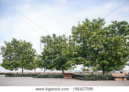 An original park with trees and benches near the port in the Kadikoy district in the Asian side of Istanbul in Turkey. Relaxation, rest, sightseeing place