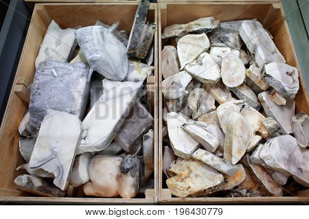 Frozen fish in supermarket