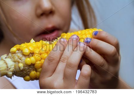 closeup of child with dirty hands eating a corn on the cob with selective focus