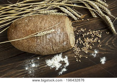 rye bread with ears and and by grains on a wooden dark table