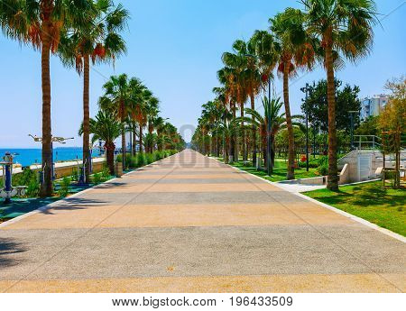 Coastline And Promenade In Limassol, Island Cyprus, Europe, Mediterranean Sea. Bright Sunny Day And