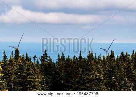 Far away wind turbines with dark trees during a cloudy day. Quebec, Canada.