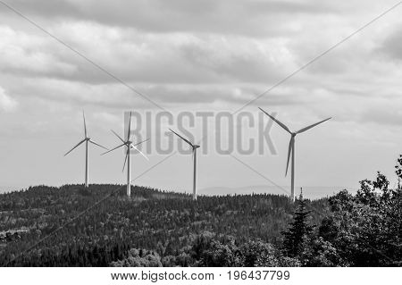 Black&White: Far away wind turbines in a big Canadian provincial park.