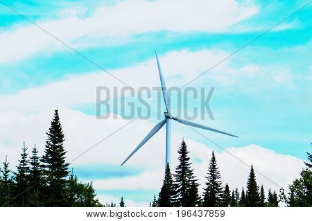 A tall wind turbine in the middle of a big Canadian forest.